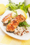 Grilled salmon steak vith cooked rice Stock Photography