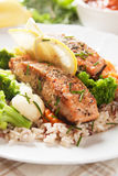 Grilled salmon steak vith cooked rice. Grilled salmon steak with cookked rice, herbs and vegetables Royalty Free Stock Photo