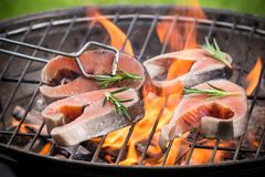 Grilled salmon steaks. On the grill, close-up Stock Images