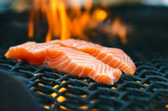 Grilled salmon steaks on a grill. Fire flame grill. Restaurant and garden kitchen. Garden party. Healthy dish. Grilled salmon steaks on a grill. Fire flame stock image