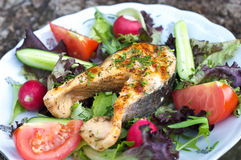 Grilled salmon on vegetables Royalty Free Stock Images
