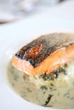 Grilled salmon with wakame sauce Royalty Free Stock Photo