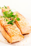 Grilled salmon on white plate closeup Royalty Free Stock Photo