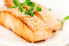 Grilled salmon on white plate macro Royalty Free Stock Images