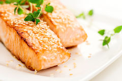Grilled salmon on white plate macro Stock Image