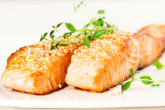 Grilled salmon on white plate Royalty Free Stock Photography