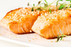 Grilled salmon on white plate Stock Photography