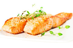 Grilled salmon on white plate Stock Photo