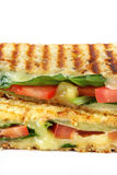 Grilled Sandwich Royalty Free Stock Images