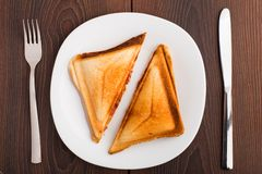 Grilled sandwich on plate. Delicious grilled sandwich on a white plate Stock Images
