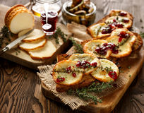 Grilled sandwich  with smoked sheep cheese and wild red huckleberry jam Stock Photos