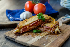 Grilled sandwich with some basil and tomatoes Royalty Free Stock Photos