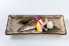 Grilled Sanma with Salt Stock Photography