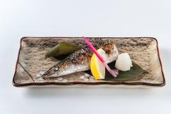 Grilled Sanma with Salt. Kaiseki Stock Photography