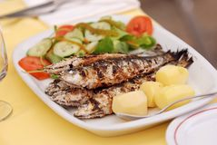 Grilled sardine Royalty Free Stock Image