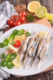 Grilled sardine Royalty Free Stock Photography