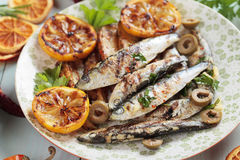 Grilled sardine fish Stock Image