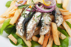 Grilled sardine fish with lemon and herbs Royalty Free Stock Photo