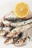 Grilled sardine fish with lemon and herbs Royalty Free Stock Images