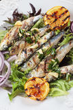 Grilled sardine fish with lettuce, lemon and onion Royalty Free Stock Photography