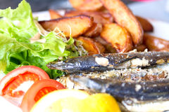 Grilled sardine fish served with green salad and potatoes Stock Image