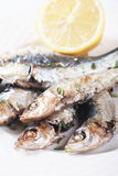Grilled sardine fish Stock Photo