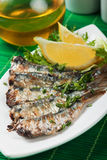 Grilled sardine fish. Grilled sardine wish served with lemon and herbs Royalty Free Stock Images