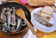 Grilled sardine in a pan Royalty Free Stock Images