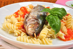 Grilled sardine on some tomato pasta. Grilled organic sardine on some tomato pasta Royalty Free Stock Photography