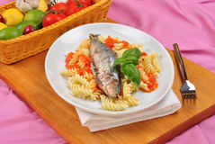 Grilled sardine on some tomato pasta. Grilled organic sardine on some tomato pasta Stock Image
