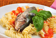 Grilled sardine on some tomato pasta. Grilled organic sardine on some tomato pasta Stock Photography