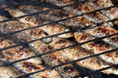 Grilled sardines. Typical Portuguese grilled sardines cooked in hot coals Royalty Free Stock Image
