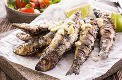 Grilled Sardines stock photography