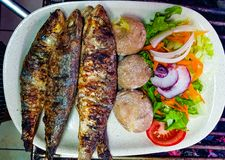 Grilled sardines with boiled potatoes and salad in white plate ready to served. grilled sardines grilled in natural charcoal gril. Grilled sardines boiled stock image