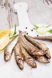 Grilled sardines. Royalty Free Stock Photo