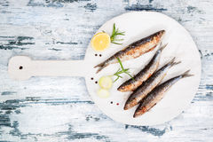 Grilled sardines. stock photography