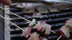 Grilled sardines stock video