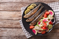 Grilled sardines with fresh vegetable salad close-up. horizontal Royalty Free Stock Photography