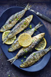 Grilled Sardines with Lemon and Herbs Stock Photography