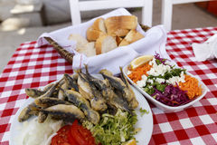Grilled sardines,pilchard. Grilled sardines in dish ,seafood Royalty Free Stock Photography