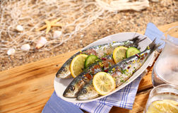 Grilled sardines on a platter outdoors Stock Image