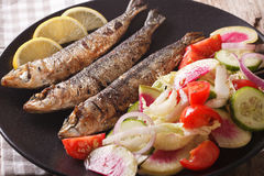 Grilled sardines with a salad of cucumber, radish, tomato, onion. Close-up on a plate. horizontal Stock Photos