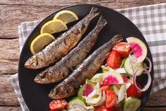 Grilled sardines with a salad of cucumber, radish, tomato, onion. Close-up on a plate. horizontal view from above Royalty Free Stock Photography