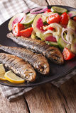 Grilled sardines with a salad of cucumber, radish, tomato, onion. Close-up on a plate. Vertical Stock Image