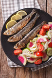 Grilled sardines with a salad of cucumber, radish, tomato, onion. Close-up on a plate. vertical view from above Royalty Free Stock Image