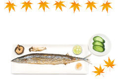 Grilled saury Stock Images