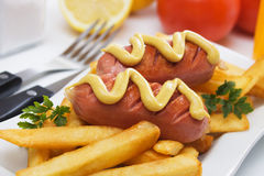 Grilled sausage with french fries. Grilled sausage with mustard and french fries on white plate Stock Image