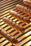 Grilled Sausage, Hot dog Stock Photo