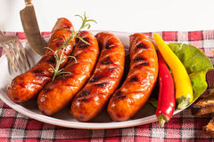 Grilled sausage. Stock Photography