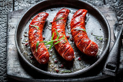 Grilled Sausage With Fresh Herbs Royalty Free Stock Images